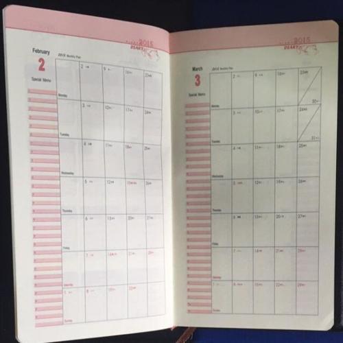 2015 Leather Schedule Planner Book (Black/Blue)