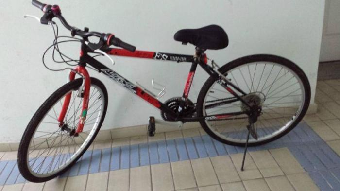 Adult Bicycle Aleoca