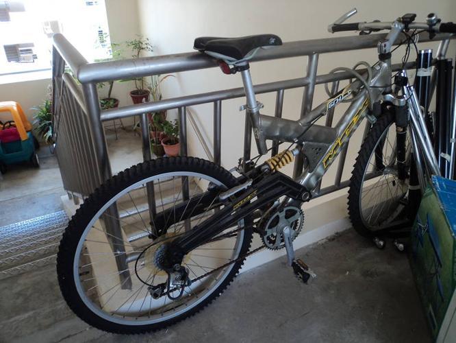 Adult Bicyle