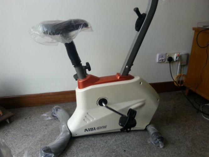 AIBI - Exercise Cycle - rarely used