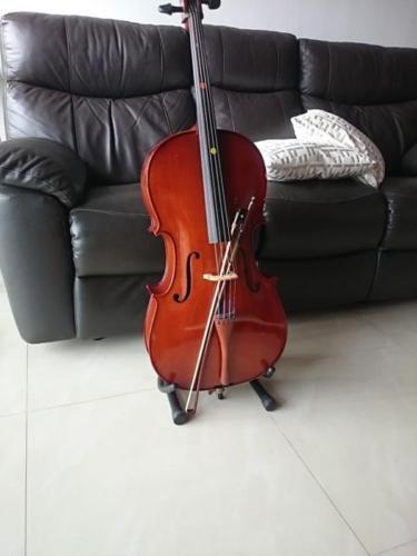 Beautiful 1/2 cello for sale