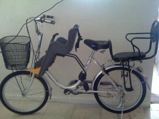Bicycle with 2 child chairs
