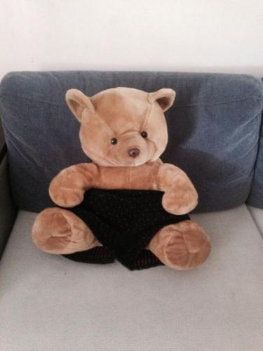 Big & cute Teddy Bear for sale