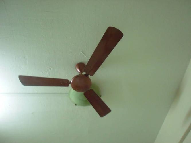ceiling fan (USHA) for sale