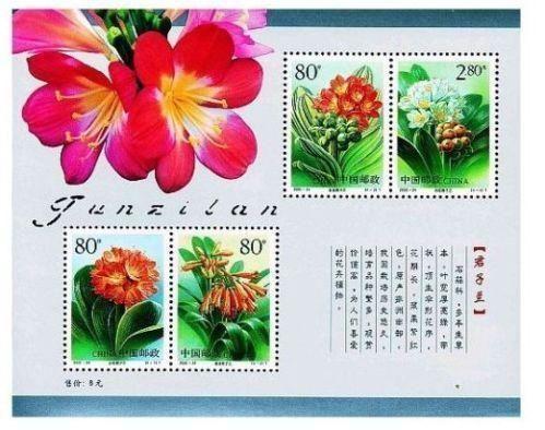 China stamp 2000-24 Clivia Flower sheetlet 君子兰
