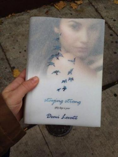 Demi Lavato:Stay Strong 365 Dats A Year