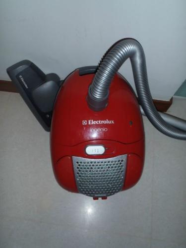 electrolux ingenio red colour
