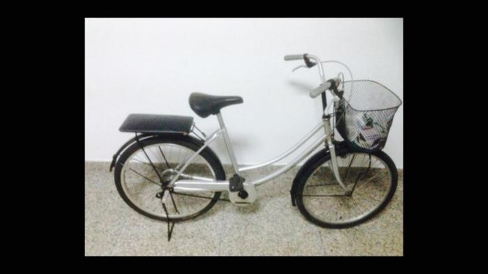 Female Bicycle for sale