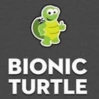 FRM 2015 Bionic Turtle, Schwers, Practice tests