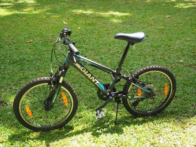 Giant XTC 20 inch Kids Bike MTB