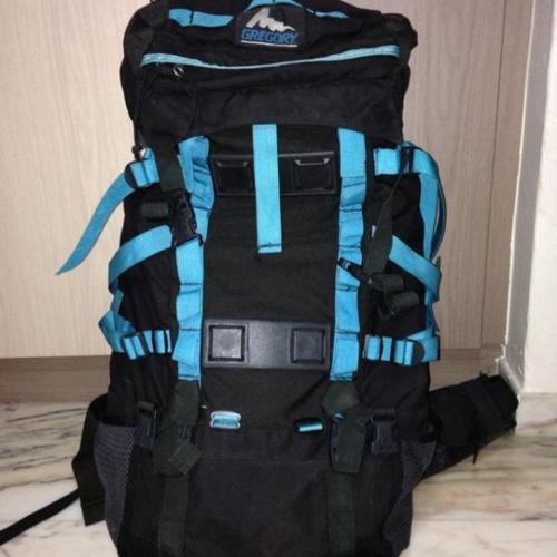 Gregory Backpack Bag
