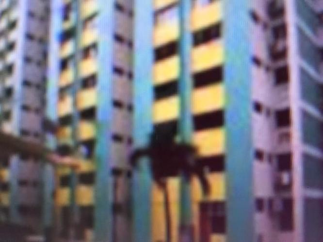 HDB Room Rental: Blk 125 Bedok North Road 1 Bedrooms