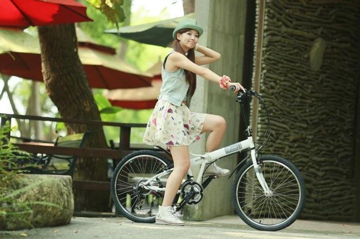 High quality Folding Bicycles foldable bike 100% made