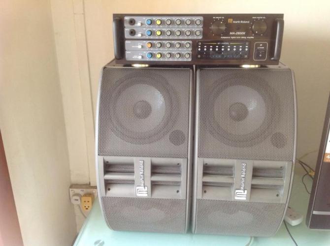 Martin Ronald Professional Echo karaoke set
