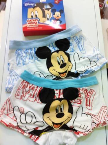 Mickey Boxer