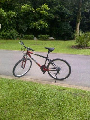 Mountain Bike for sale - SGD100 (Geylang)