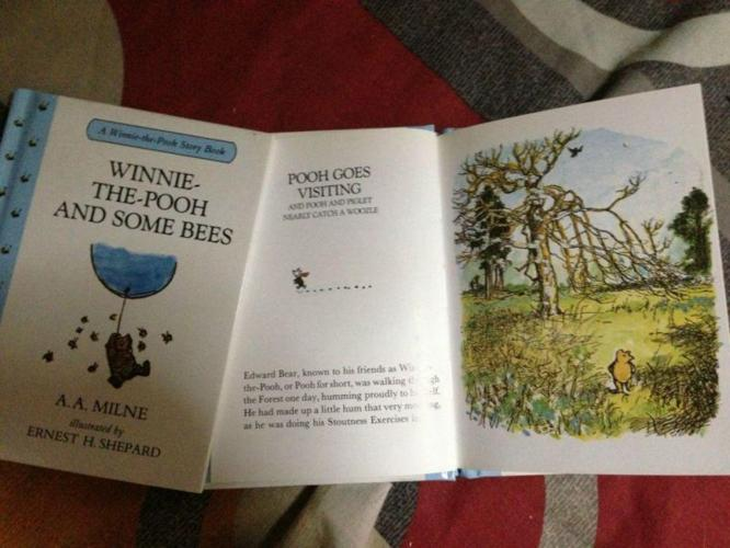 Moving out sale - large selection of kids books