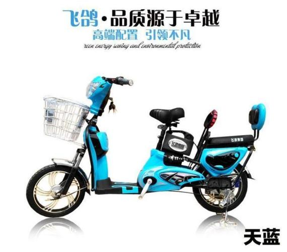New Electric Bicycle / Ebike