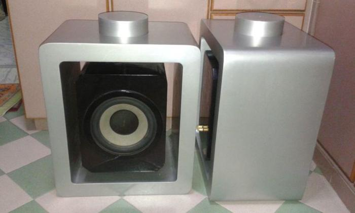 RARE DESIGNER SPEAKERS BUILT IN 8 INCH WOOFER.