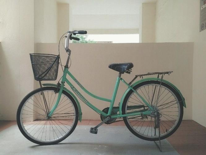 RETRO MINT BICYCLE (Adult size)