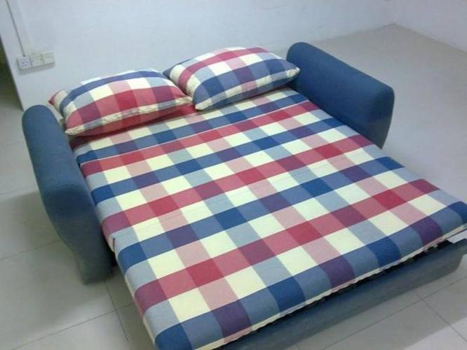 Sea horse sofa bed & rack