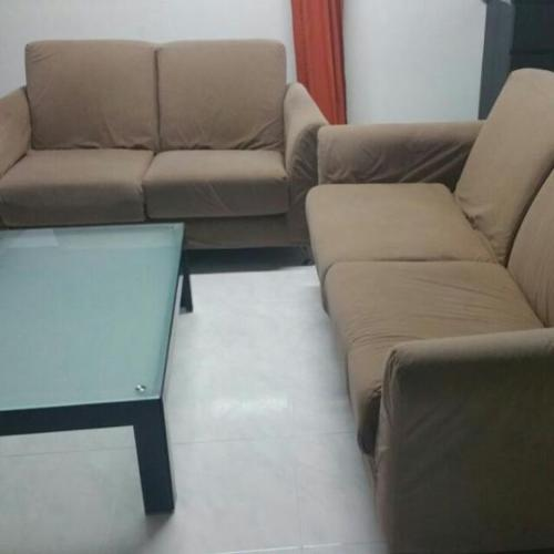 Sofa with Coffee Table