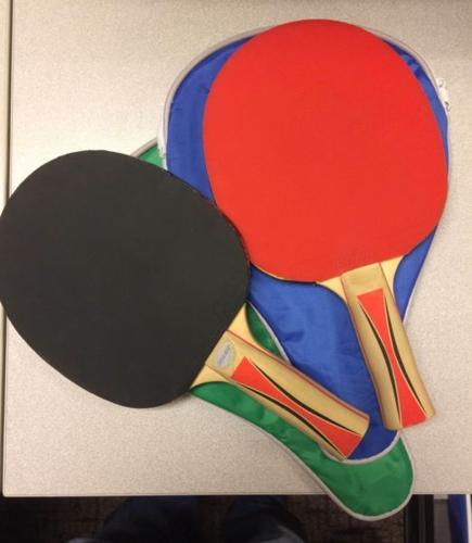 Table Tennis (TT) Net, 2 Bats and 6 balls