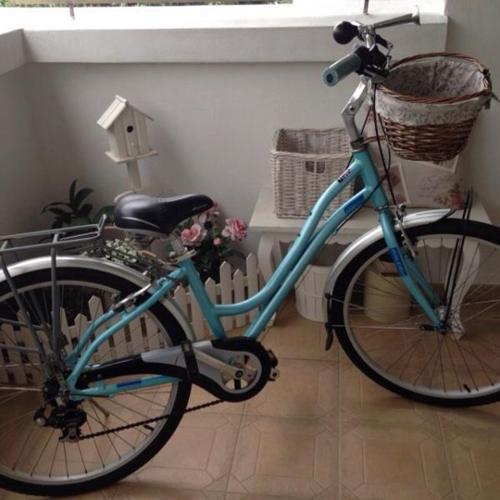 Vintage Raleigh Lady Bicycle