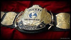 WTB: Winged Eagle Belt WWE / WWF Adult Size - 91138008
