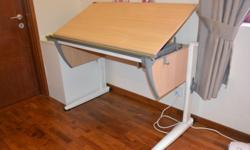 Adjustable ergonomic desk - Moll - 115*65*80 SMS or