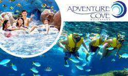 Adventure Cove Water Park Asia's most amazing