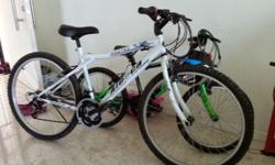 Italian brand, Aleoca's 26 inch mountain bike with