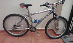Golden Deki Aluminium Mountain Bike with front