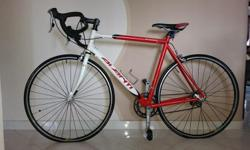 AVANTI vivace 6061 56cm for sale with SHIMANO