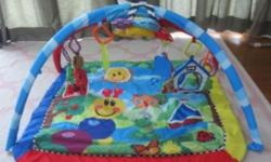 I am selling a Baby Einstein playmat in good condition.
