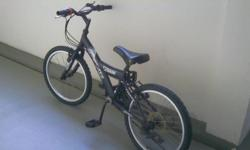 NOT FOR FUSSY 1) MERTZ Bicycle chase - $60 with gear