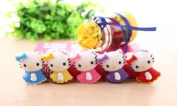 Cartoon Hello Kitty in Skirt USB Drive 8g -S$15, 16g -