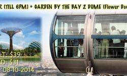 Garden By the Bay (2 DOME) + Singapore Flyer -(Adult) =