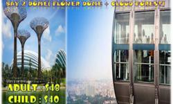 Singapore Flyer (till 6pm) + Garden By The Bay (Adult)