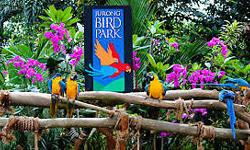 Cheapest Jurong Bird Park Tickets with Tram ride for