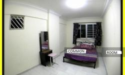 Common Room Available for Rent from 1st Sep 2017 BLK