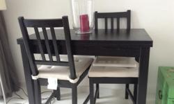 BJURSTA Expandable Table with Stefan Dining Chairs and