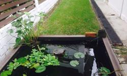 Great pond for sale, perfect for terrapins or fish in