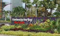 Gardens By The Bay City in a Garden Call Ricky 84681131