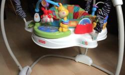 Gently used Fisher-Price Discover 'n Grow Jumperoo in