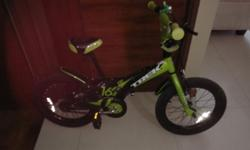 Selling kids bicycle together with the training