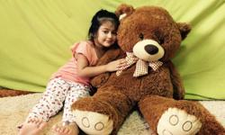 Large Plush Bear, New, Brown Colour Brand New 100%