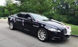 Alpha Drive provides you premium cars for hire at