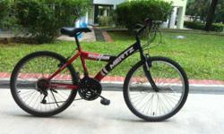 One Mertz 24 inch adult mountain bike for sale in Seng