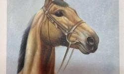 Hand painted horse portrait. Oil on canvas. 40x50cm.